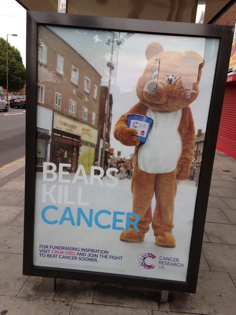 Bears Kill Cancer